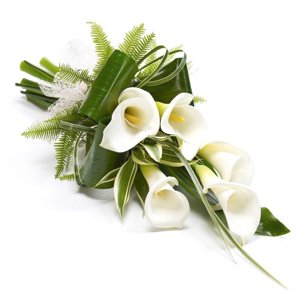 Sympathy , Passion Flowers